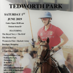 Heroes Day Tidworth Polo Club